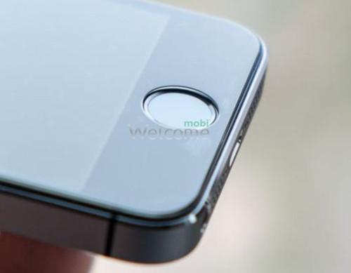 Стекло iPhone 5,5s PremiumTempered Glass Pro+ противоударное 0.33 мм