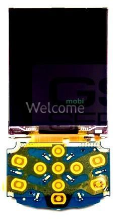 Дисплей Samsung C3310 orig (rev 0.8)